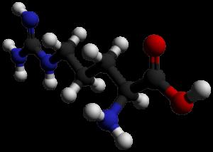 まず積極的に摂取したいアミノ酸は「アルギニン」
