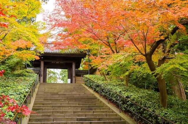 2位.古都にしてオシャレタウン鎌倉を遊びつくす