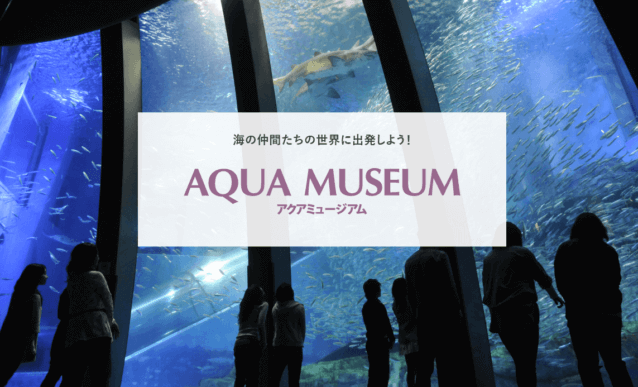 アクアミュージアム