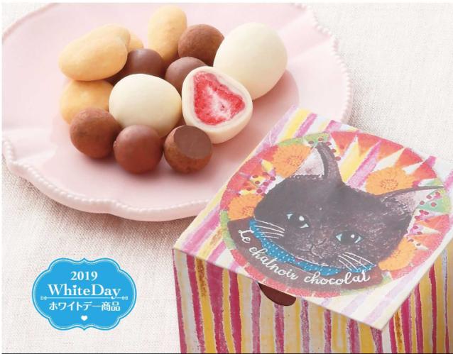 愛らしい黒猫のボックスに4種のチョコレート