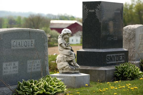 墓石を探す