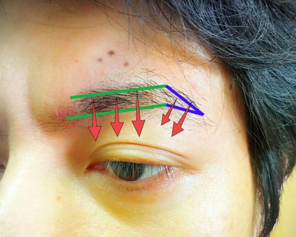 基本のメンズ眉毛の整え方2