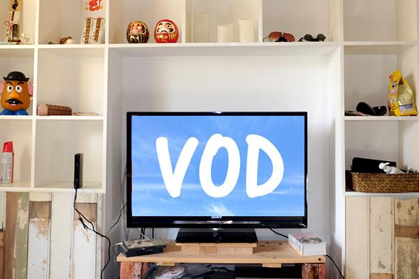 動画視聴サービス(VOD)を利用する